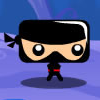 Ninja-Pi-Ro