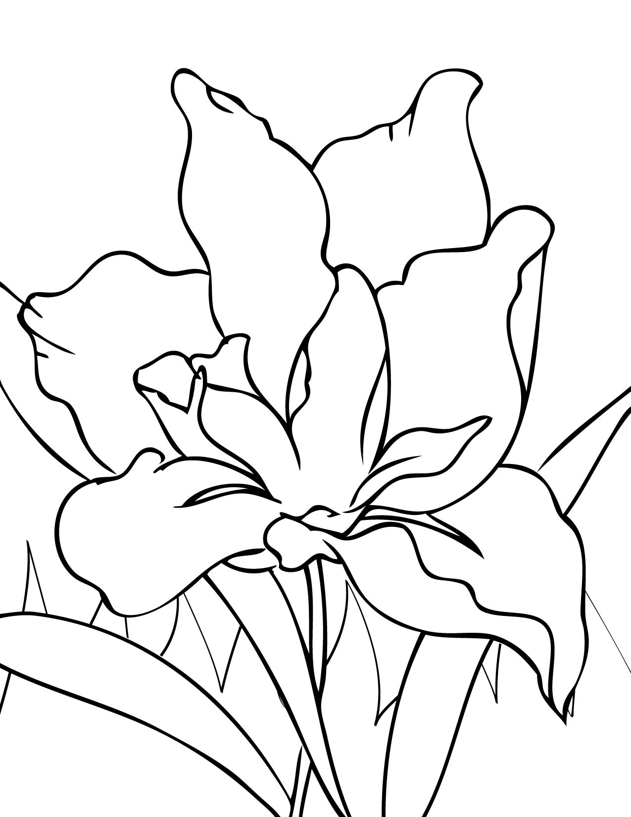 Iris Flower Coloring Page : Handipoints Coloring Pages PrimaryGames.com