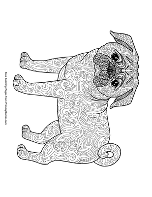 Pug Coloring Page Printable Chinese New Year Coloring