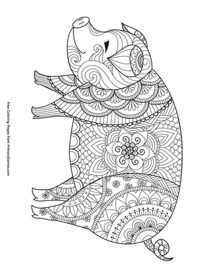 24+ Zentangle Red Panda Coloring Page