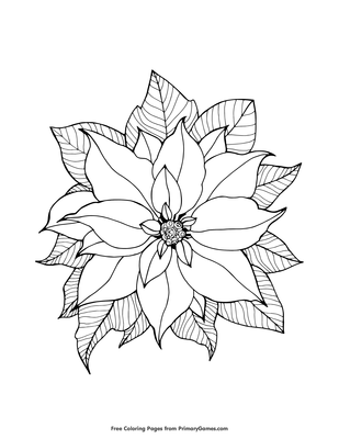 Poinsettia Coloring Page Printable Christmas Coloring Ebook