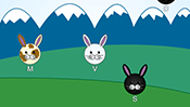 Easter Bunnies Typing