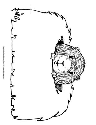 Peeking Groundhog Coloring Page   Printable Groundhog Day ...