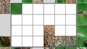 Groundhog Day Block Puzzle