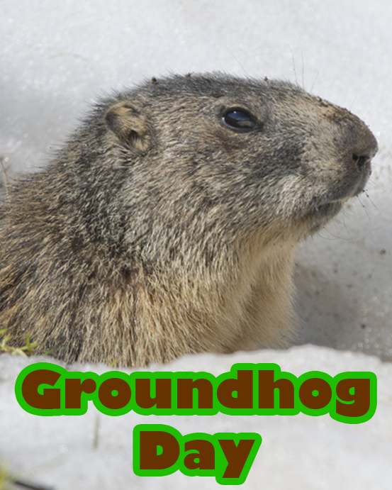 when is ground hog day