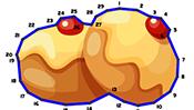Hanukkah Dot to Dot Puzzle