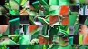 St. Patrick's Day Swap Puzzle
