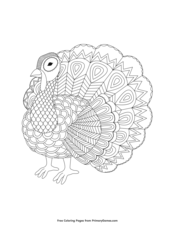 Zentangle Turkey
