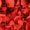 Valentine Turn Puzzle