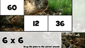Math Tiles: Groundhog Day Multiplication
