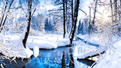Winter Jigsaw Puzzle