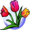 Tulips Drag & Drop Puzzle
