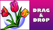 Tulips Drag & Drop Puzzle