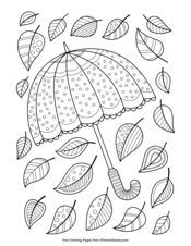Umbrella and Leaves