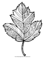 Medley of Fall Leaves Adult Coloring Page | FaveCrafts.com | 226x175