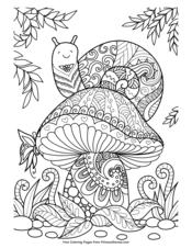 Snail on a Mushroom