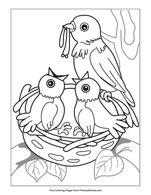 Birds in Nest Coloring Page | Printable Spring Coloring ...