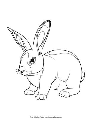 Baby Rabbit Coloring Page Printable Spring Coloring Ebook