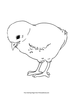 photo regarding Chicken Printable named Little one Bird Coloring Site Printable Spring Coloring e book