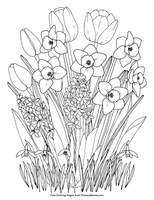 image about Printable Spring Pictures known as Spring Bouquets Coloring Website page Printable Spring Coloring