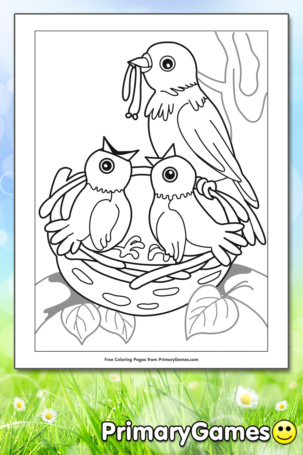 Birds in Nest Coloring Page Printable