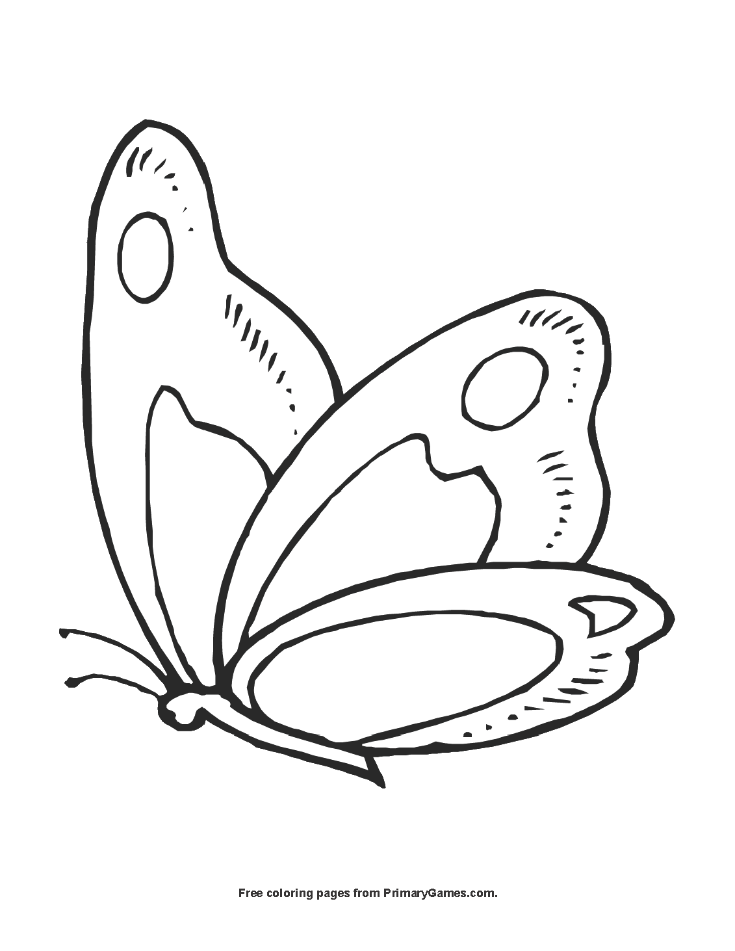 Butterfly Coloring Pages Pdf : Butterfly coloring page printable summer ebook