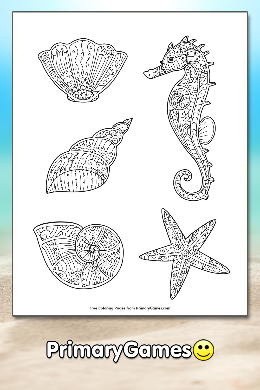 Seashells Coloring Page Printable